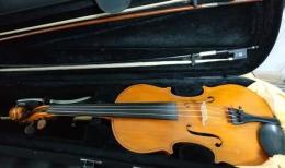 Буковинець намагався перенести через кордон старовинну скрипку