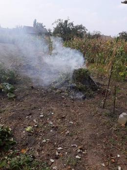 У Чернівцях інспекція благоустрою просить містян повідомляти про спалювання опалого листя (фото)