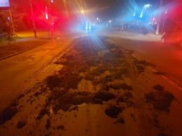 У Чернівцях на дорогу у спальному районі  висипалось 10 тонн гною (фото)