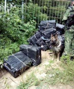 На Буковині службовий собака знайшов покинуті ящики з цигарками