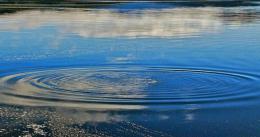 У ставку на Буковині втопився 4-річний хлопчик