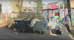 На Білоусова у Чернівцях через невивезені гори сміття завелися пацюки