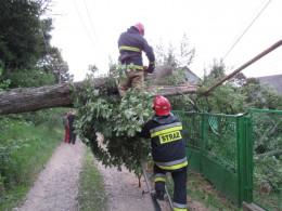 На Буковині сильний вітер знімав покрівлі та валив дерева