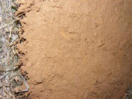 На Буковині дитина отримала травми через падіння на неї саманної стіни