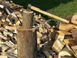 На Буковині під час заготовлі дров в лісі трагічно загинув чоловік