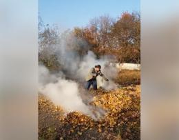 Працівника будівельного ліцею у Чернівцях оштрафували за спалювання листя