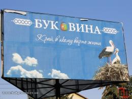 Чернівецьку область назвали найбільш екологічно чистою в Україні