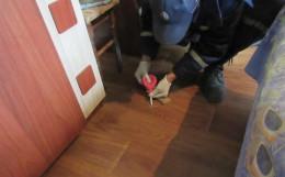 На Буковині в райцентрі рятувальники зібрали ртуть із розбитого термометра