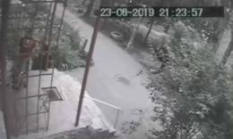 У Чернівцях поліція розшукує чоловіка, який нацькував собаку на кота