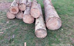 На Вижниччині викрили крадія лісодеревини (фото)