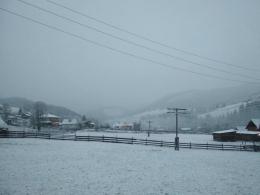 У горах на Буковині випав сніг (фото)