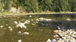 На Буковині чоловік втопився у гірській річці