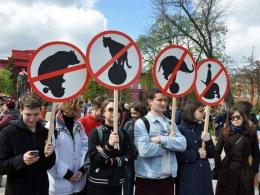 Активісти в Чернівцях проведуть марш за права тварин