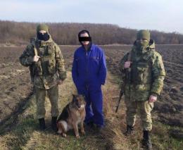 На Буковині собака допоміг прикорданникам виявити порушника з наркотиками
