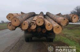 На Буковині судитимуть чоловіка, який перевозив незаконно зрубану деревину