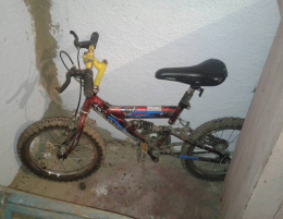 На Буковині затримали неповнолітніх викрадачів велосипедів