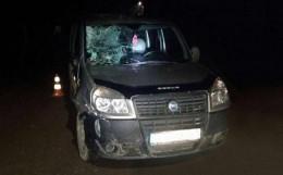 """На Буковині 24-річний водій на """"Фіаті"""" збив на смерть пішохода"""