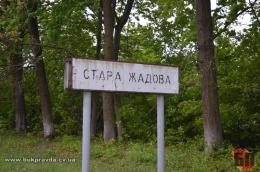 Стара Жадова