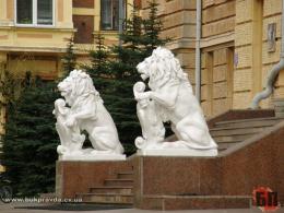 У Чернівецькій ОДА шукають нового директора департаменту соцзахисту