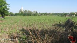 Майже 7га земельних ділянок повернено у володіння громад на Буковині