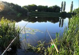 Під час риболовлі в Зарожанах троє чернівчан отруїлися грибами