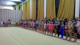Понад 100 юних буковинських гімнасток взяли участь у чемпіонаті області