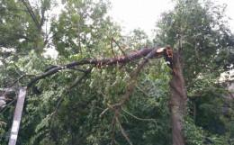Нічна негода зруйнувала дах школи на Буковині