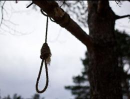 На Буковині чоловіка знайшли повішеним на дереві