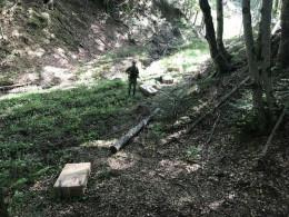 Прикордонники на Буковині за допомогою пострілів запобігли контрабанді 6750 пачок сигарет
