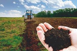 На Буковині прокуратура вимагає повернути земельні ділянки вартістю шість мільйонів гривень