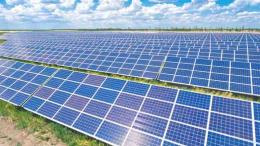 У селі на Заставнівщині почали будувати сонячну електростанцію