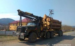 Буковинець перевозив 20 метрів кубічних лісодеревини за підробленими документами