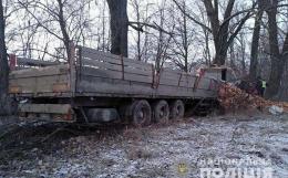 """На трасі """"Житомир - Чернівці"""" вантажівка з цеглою в'їхала у дерево (фото)"""