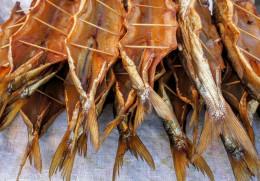 На Буковині у магазинах та ресторанах шукають заражену рибу