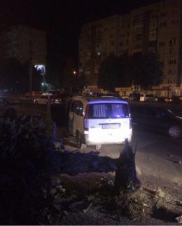 У Чернівцях п'яний водій буса зніс дерево і вижив (фото)