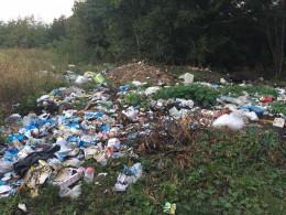 На Буковині селяни створили стихійне сміттєзвалище між двома селами (фото)
