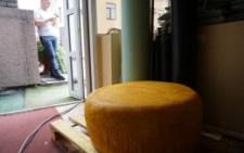 У Чернівцях виготовили найбільшу головку сиру (фото)