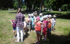 На Буковині організують пришкільний табір для обдарованої учнівської молоді