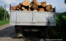 На Сторожинеччині поліцейські вилучили 7 кубів лісодеревини різних порід (фото)