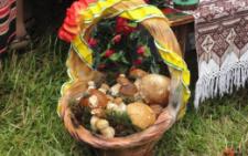 На Буковині двоє чоловіків отруїлися грибами