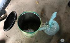В Хотинському районі правоохоронці викрили незаконний посів конопель (фото)