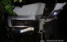 На Буковині водій мінівену врізався у дерево, є постраждалі