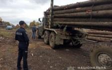 На вихідних викрили двох осіб, які перевозили ліс на Буковині без документів (фото)
