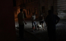 У центрі Чернівців пітбуль мало не загриз людину (фото+відео)