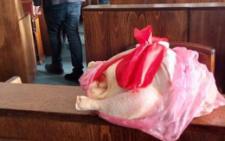 У Чернівцях на сесію міськради принесли тушу курки із написом «Перша тушка міської ради» (фото)