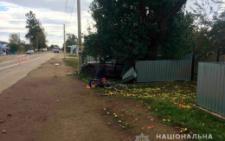 На Буковині «БМВ» збив на смерть 59-річну велосипедистку (фото)